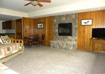 Twin Oaks- rec room, fireplace & TV